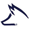 Fox Ford logo